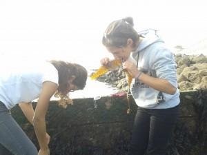Pescando cangrejos (17)