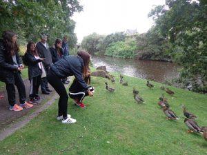 con-los-patos