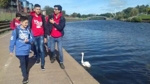 Con los cisnes