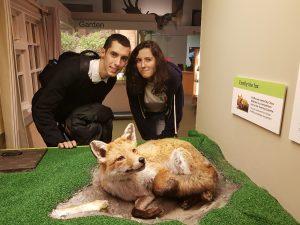 Ana, Dani, Mr. Fox